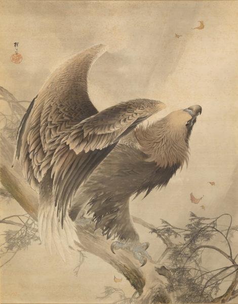 木島櫻谷《猛鷲図》