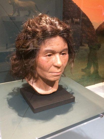 ゲノム情報によって復元された縄文人女性の顔